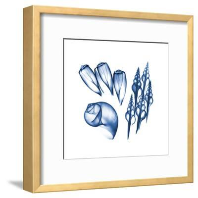 Blue Assortment Five-Albert Koetsier-Framed Art Print