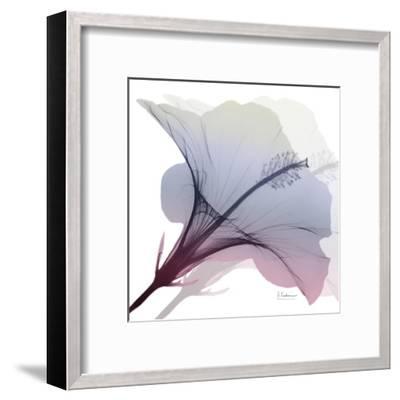 Tasty Grape Hibiscus 2-Albert Koetsier-Framed Art Print
