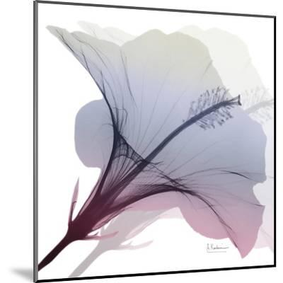 Tasty Grape Hibiscus 2-Albert Koetsier-Mounted Art Print