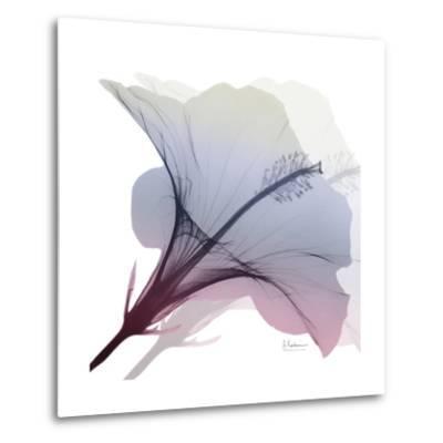 Tasty Grape Hibiscus 2-Albert Koetsier-Metal Print