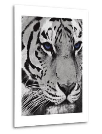 Purple Eyes-Jace Grey-Metal Print