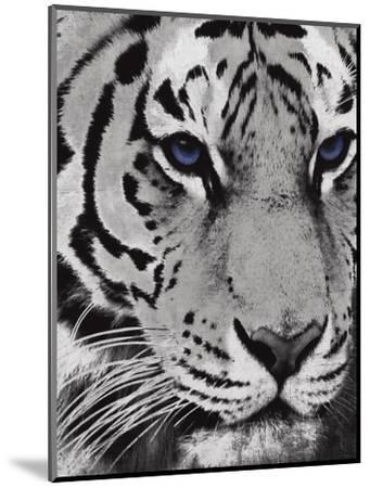 Purple Eyes-Jace Grey-Mounted Art Print