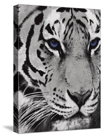 Purple Eyes-Jace Grey-Stretched Canvas Print