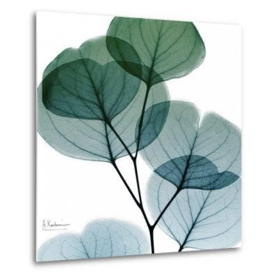 Dull Eucalyptus Mate-Albert Koetsier-Metal Print