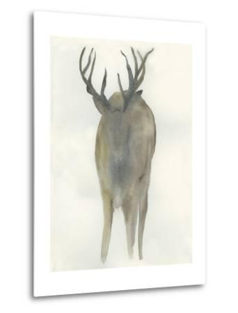 Solo Deer-Beverly Dyer-Metal Print