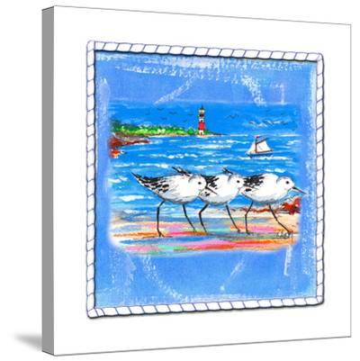 Beach-Front-Shore Birds-Ormsby, Anne Ormsby-Stretched Canvas Print