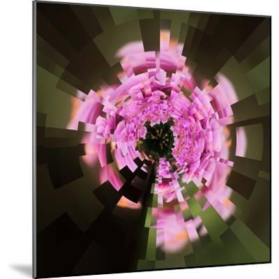 Variations on a Circle 24-Philippe Sainte-Laudy-Mounted Photographic Print
