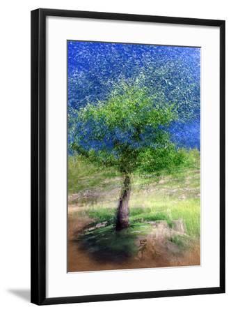 Spring Tree-Ursula Abresch-Framed Photographic Print