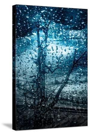 So Cold!-Ursula Abresch-Stretched Canvas Print