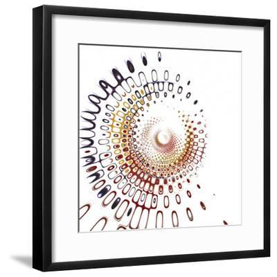Variations on a Circle 28-Philippe Sainte-Laudy-Framed Photographic Print