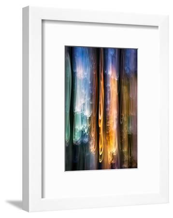 Evening Cedars-Ursula Abresch-Framed Photographic Print