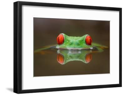 Burning Eyes-Kutub Uddin-Framed Photographic Print
