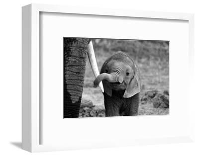 Close-Bjoern Alicke-Framed Photographic Print