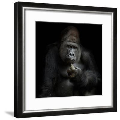 Imho...-Antje Wenner-Braun-Framed Photographic Print