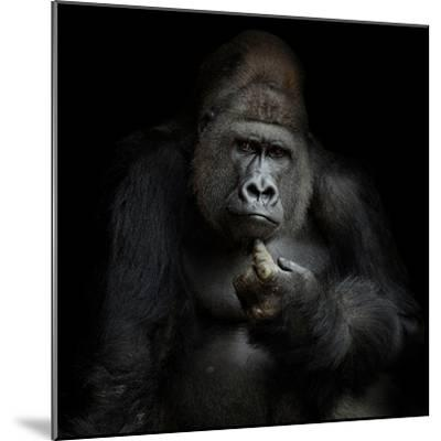 Imho...-Antje Wenner-Braun-Mounted Photographic Print