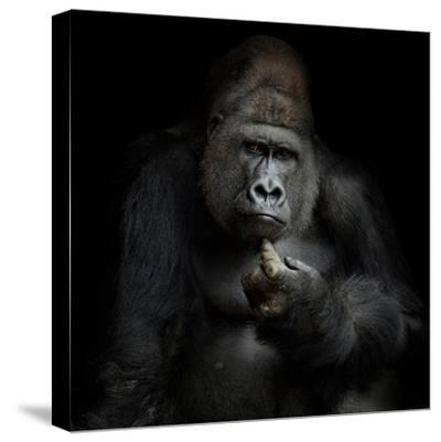 Imho...-Antje Wenner-Braun-Stretched Canvas Print