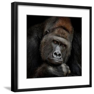 One Moment in Contact-Antje Wenner-Braun-Framed Photographic Print