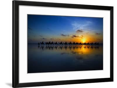 Sunset Camel Ride-Louise Wolbers-Framed Photographic Print