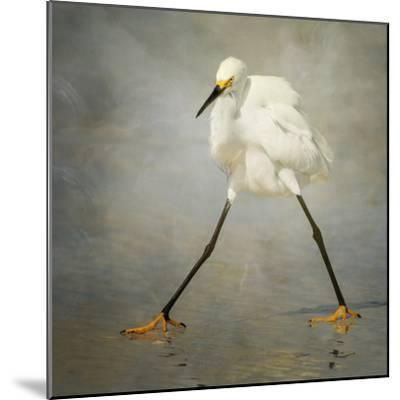 The Rock Star-Alfred Forns-Mounted Photographic Print