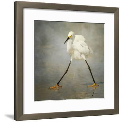 The Rock Star-Alfred Forns-Framed Photographic Print