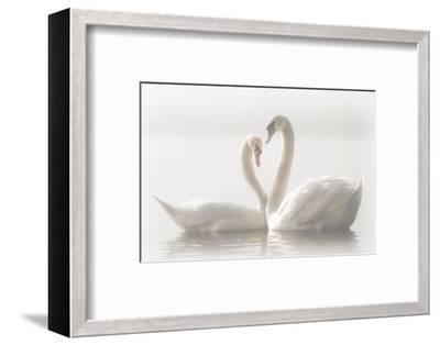 Forever-Monika Schwager-Framed Photographic Print