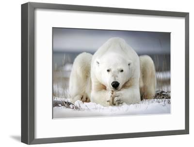 Now That You Wake Me Up Is Better for You to Start Running-Alberto Ghizzi Panizza-Framed Photographic Print