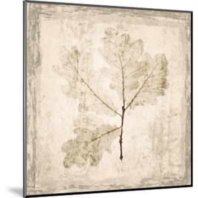 Stone Leaf III-Irena Orlov-Mounted Art Print