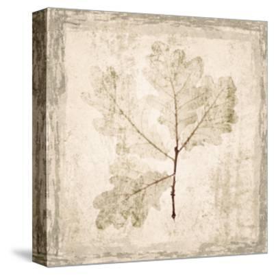 Stone Leaf III-Irena Orlov-Stretched Canvas Print