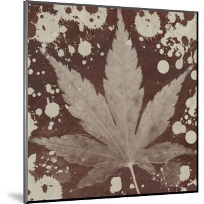 Botany Expressions IV-Irena Orlov-Mounted Art Print