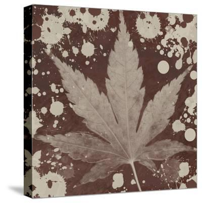 Botany Expressions IV-Irena Orlov-Stretched Canvas Print
