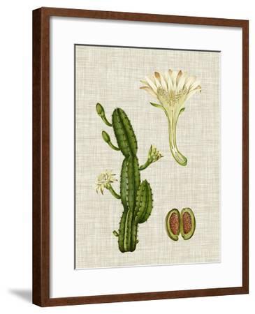 Elegant Tropicals III-Vision Studio-Framed Art Print