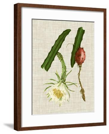 Elegant Tropicals II-Vision Studio-Framed Art Print