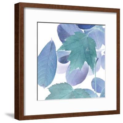 Xray Leaves III-Vision Studio-Framed Art Print
