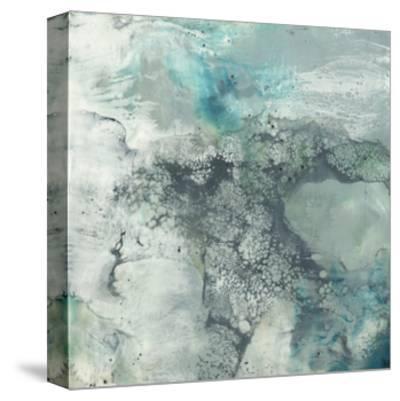 Sea Lace I-Jennifer Goldberger-Stretched Canvas Print