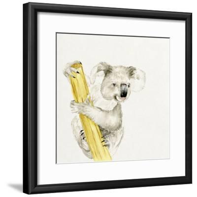 Baby Koala II-Melissa Wang-Framed Art Print