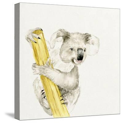 Baby Koala II-Melissa Wang-Stretched Canvas Print