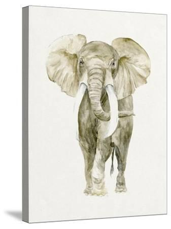 Baby Elephant I-Melissa Wang-Stretched Canvas Print