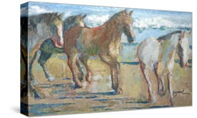 Caballos en la Playa-Suzanne Wilkins-Stretched Canvas Print