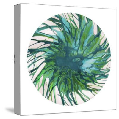 Spin Art 29-Kyle Goderwis-Stretched Canvas Print