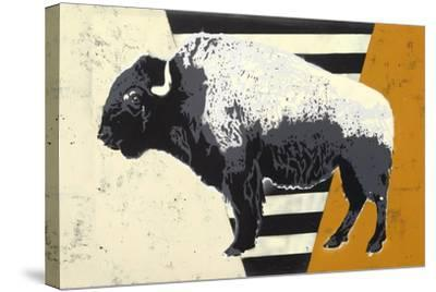 Bison-Urban Soule-Stretched Canvas Print