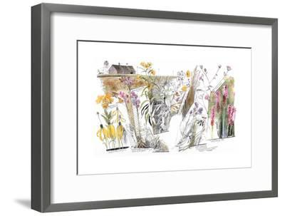 A Drawing of the Wildflowers in America's Tallgrass Prairies-Jack Unruh-Framed Giclee Print