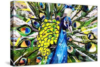 Portrait of Colorful Peacock-Sarah Jackson-Stretched Canvas Print