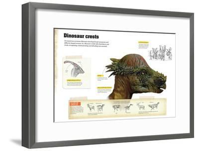 Infographic That Describe Different Types of Dinosaur Crests That Were Used to Communicate--Framed Poster