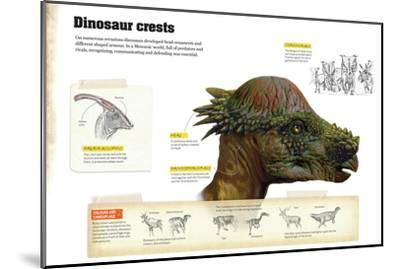 Infographic That Describe Different Types of Dinosaur Crests That Were Used to Communicate--Mounted Poster
