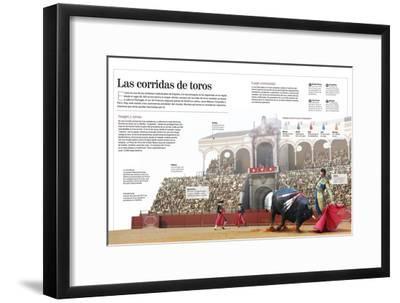 Infografía Acerca De La Tradicional Corrida De Toros, Especialmente En España--Framed Poster