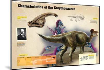 Infographic of the Corythosaurus, a Dinosaur from the Cretaceous Period--Mounted Poster