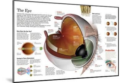 Infographic of the Parts of the Human Eye, their Function and the Most Common Eye Defects--Mounted Poster