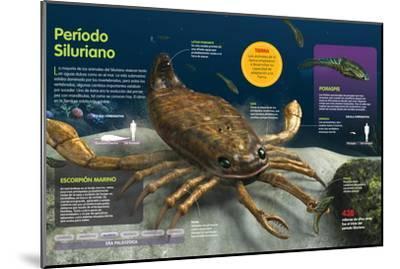 Infografía De Los Animales Del Fondo Oceánico En El Período Silúrico (Hace --Mounted Poster