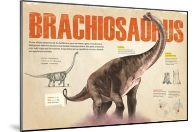 Infografía Del Brachiosaurus Y Las Zonas Donde Se Hallaron Fósiles De Este --Mounted Poster