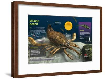 Infographic of the Animals of the Ocean During the Silurian Period (438 Million Years Ago)--Framed Poster